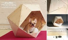Diy Geometric Doghouse- Hell yeah, my cat needs an open dodecahedron for a cat cave! No dogs allowed. I'll make it too small for them to climb into. :)