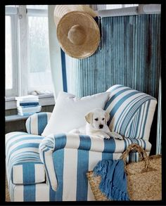 Love this blue and white stripe chair. And the cute puppy.