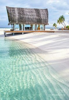 Early Morning at the Maldivian Resort by Jenny Rainbow.Early peaceful sunny morning at white sand beach of the tropical Maldivian island with turquoise shallow water and wedding hut. Place for the wedding ceremonies. Dream Vacations, Vacation Spots, Italy Vacation, The Places Youll Go, Places To See, Maldives Voyage, Maldives Resort, Maldives Beach, Maldives Travel