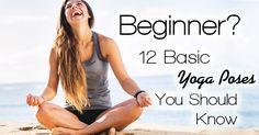 Beginner 101 Sexy Yoga School