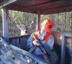 Qualcuno dia un fucile al cervo:-))