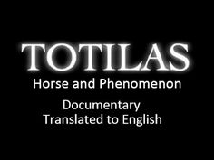 One hour long documentary about Totilas' life from his birth to his performance at Aachen in 2014. It was broadcasted on dutch television mid-august and tran...
