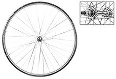 c57eb870569 WheelMaster Rear Bicycle Wheel