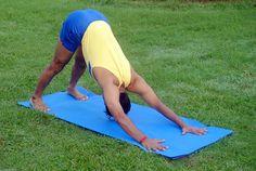 200 hour Ashtanga Vinayasa Yoga Teacher Training at Ojashvi Yogashala