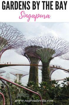 Gardens by the bay - Visita aos jardins futuristas de Singapura. Como chegar, valores de atrações, horários e outras curiosidades sobre esse cartão-postal.