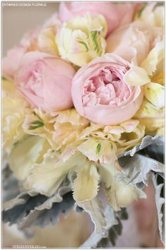Cabbage #rose #bouquet
