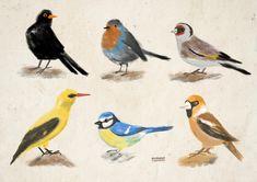 childrensbook illustration, illustration, custom illustration, digital art, ipadpro, procreate Digital Art, Birds, Illustrations, Animals, Animales, Animaux, Illustration, Bird, Animal