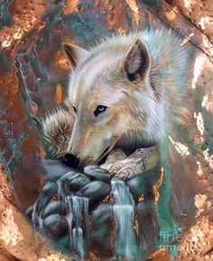Copper Arctic Wolf Painting  - Copper Arctic Wolf Fine Art Print