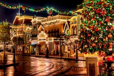 The Holiday Season: Expectations vs. Reality | The Odyssey