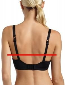 Boosaurus!: Bra Fitting: Five Signs of a Poor Fit