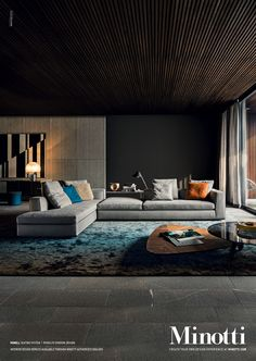 Minotti powell sofa and dibbets rainbow rug  projectsfurniture.com