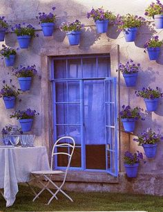 a dream garden wall of periwinkle pots growing purple pansies
