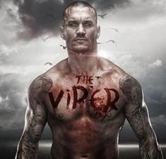 How Much Money Does Randy Orton per match? Know about his Salary and Net WorthYou can find info that includes salary,net worth Bmx Cycles, Wwe Girls, Wrestling Superstars, Lucha Underground, Cm Punk, Randy Orton, Total Divas, Cycling Art, Musica