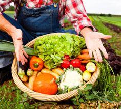 10 aliments qu'il faut absolument acheter bio ! - Et-si-on