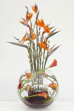 1000 Images About Floral Designs On Pinterest Bird Of
