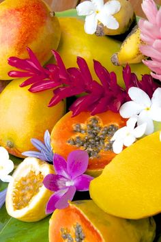 Hawaiian tropical fruits & flowers