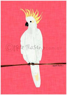 Sulphur Crested Cockatoo ART PRINT by MessyMissKate on Etsy