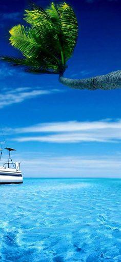 Iphone Wallpaper yacht tropical beach hd Hd Iphone Wallpaper Yacht, Ipad Air Wallpaper, Green Wallpaper, Tumblr Wallpaper, Mobile Wallpaper, Great Backgrounds, Best Iphone, Cool House Designs, Wallpaper Downloads