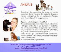 Escola Portuguesa de Feng Shui: ANIMAIS E O FENG SHUI
