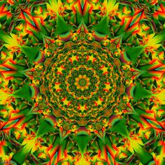 Fall into Fade Fractal Art, Fractals, Trippy Pictures, Eye Tricks, Line Drawing, Drawing Art, Trippy Gif, Kawaii Anime, Funny Emoji