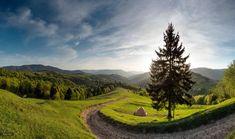 Spring in the Carpathian Mountains, Ukraine photo 1