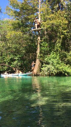 Weeki Wachee, Crystal River Fl