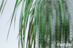 Mastercarre weiß  www.frontglas.de #Glas #Glass