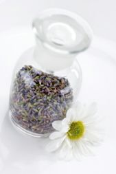 Homemade Lavender Water Recipes, for linens,  ironing, mosquito repellent, etc...