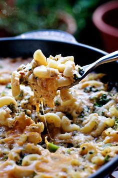 high protein -low fat Mac and Cheese? Yes, Please