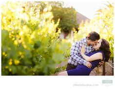 Napa Valley vineyard engagement photos