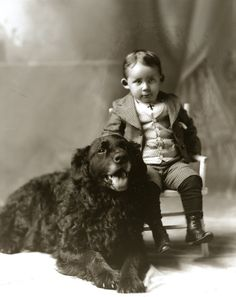 Vintage portrait (1880) Little boy with his Newfoundland Dog | eBay
