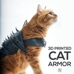 J Wall from Print That Thing designed his Cat Armor by rough sketching it first and then using Maxon's Cinema 4D.