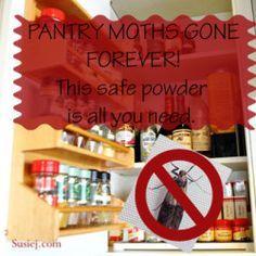 How I Finally Got Rid of Pantry Moths!