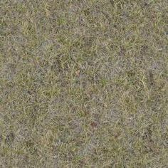 TEXTURE LIB -- SITE WITH GREAT PATTERNS! Seamless texture of lawn of mostly dry grass with few green blades.
