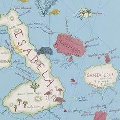 Galapagos by Sanderson - Encuéntralo en nuestra tienda de la calle Aribau nº 71 de Barcelona