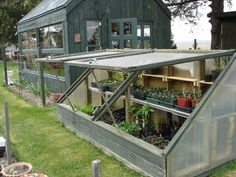 Green house using old windows.