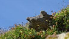 Plouhinec, Finistère, Bretagne, France Brittany, Mount Rushmore, Mountains, Nature, Travel, Rocks, Brittany France, Naturaleza, Viajes