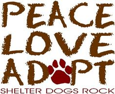 PEACE LOVE ADOPT, shelter dogs rock! adopt a dog, anim, shelter dogs, shelters, pet, dog cat, peace, rocks, furry friends