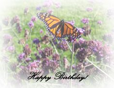 Birthday Card Outside Note Cards, Birthday Cards, My Design, Flowers, Plants, Bday Cards, Index Cards, Anniversary Cards, Flora