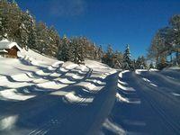 CQFD, l'émission sciences et santé de RTS La Première, vous propose une émission spéciale avalanches et neige, en direct de la montagne. Pour évoquer la neige, l'équipe de CQFD reçoit Jean-Christophe Loubier, géographe à l'HES-SO Valais avec qui l'équipe du Prof. Schumacher a collaboré pour le projet JusteNeige. Avalanche, Jean Christophe, Outdoor, Mountain, Snow, Beginning Sounds, Outdoors, Outdoor Living, Garden