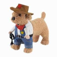 Moolecole cat Dog Halloween Cool Cowboy Style Funny Costume Dogs Cosplay Coat 5 > Details can be found  : Cat sweater