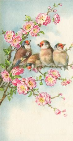 LM Studio: Vintage Postcard Birds in a cherry tree.
