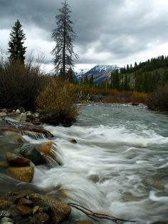 Photo about Baker creek flows towards Big Wood River in the Sawtooth National Recreation Area, Idaho. Hunting Guide, Wood River, Sun Valley, Paragliding, Outdoor Recreation, Rock Climbing, Rafting, Idaho, Fly Fishing