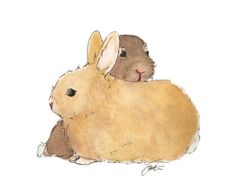 bunnies Penguins, Bunnies, Teddy Bear, Toys, Animals, Art, Activity Toys, Art Background, Animales