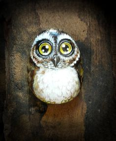 Owl No.2  Handpainted   rock painting painted by thestoneteller