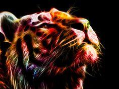 Tiger by minimoo64 on DeviantArt
