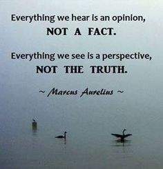 ~ Marcus Aurelius ----- Not everything is opinion and perspective. Facts can be defined, and the search for truth is a bit more complicated. The statement does reflect that much that is taken as fact and truth are opinion and perspective.