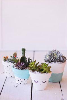 25 Simple DIY Ways To Customize & Paint Terra Cotta Pots | Homelovr Suculentas Interior, Suculentas Diy, Succulent Arrangements, Planting Succulents, Foto Art, Crafts To Make And Sell, Boho Diy, Dog Snacks, Types Of Plants