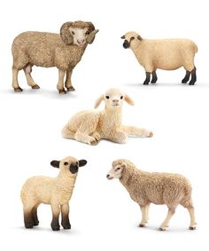Love this Sheep Family Set on #zulily! #zulilyfinds