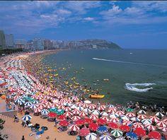10 Places Must-Visit in Busan, South Korea ~ LeX Paradise